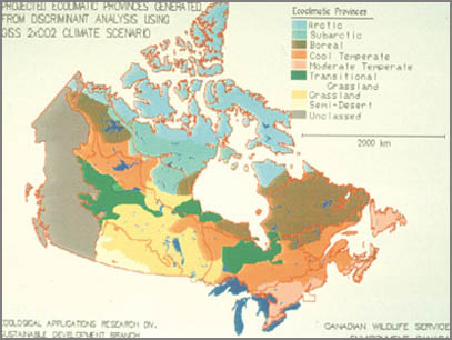 Projected ecoregions of Canada after climate change