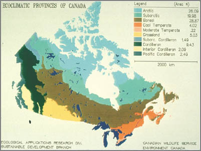 Ecoregions of Canada before climate change