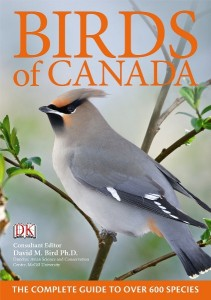 small birds of canada book