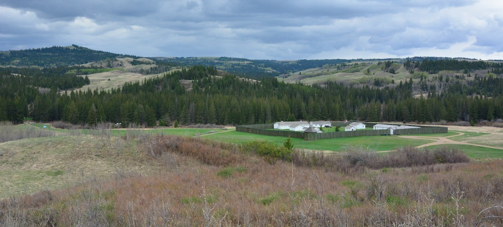 Fort Walsh National Historic Site. A test of your birding obsession: does this photo make you think a) hey look, a fort, or hey look, a bunch of really birdy mixed habitat?