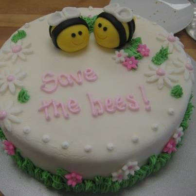 Save the Bees cake by Brie, my multi-talented daughter