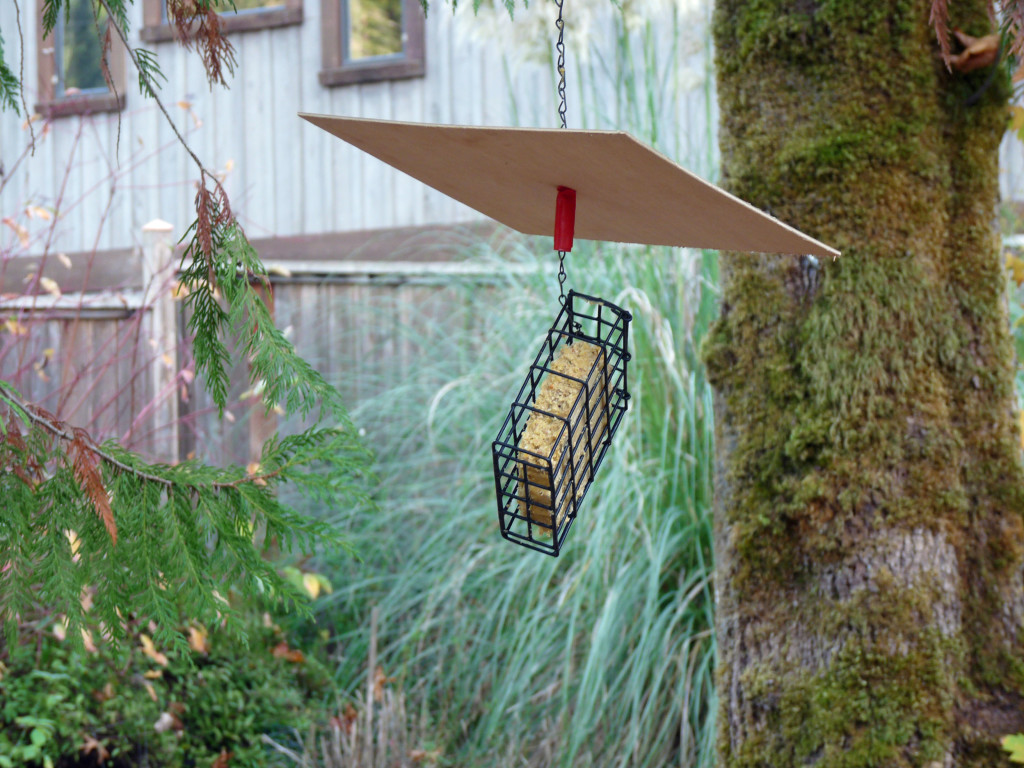 Hanging suet feeder with a floating roof